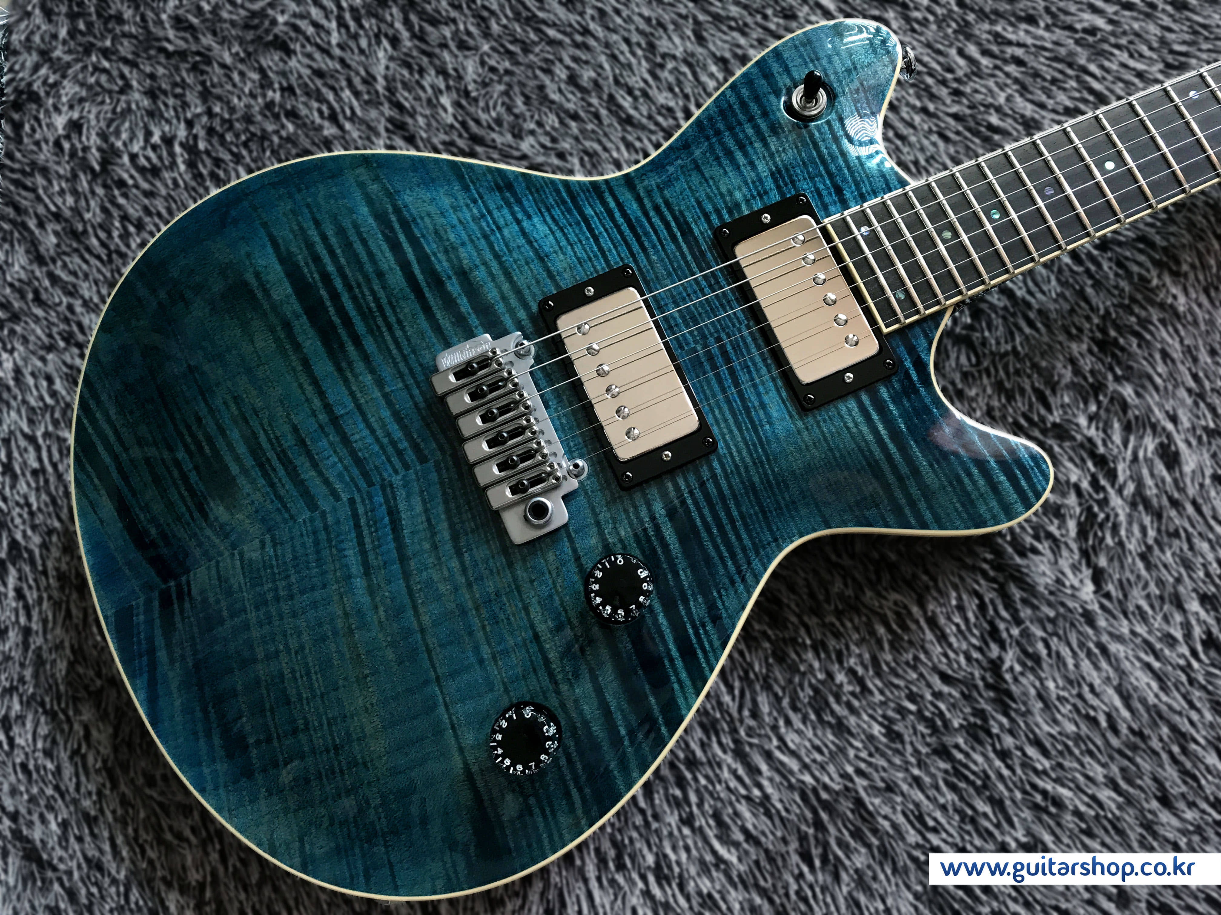 T's Arc-STD24/VS100N GUITAR (Arctic Blue)